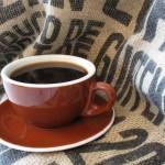 La cafeína protege nuestro cerebro
