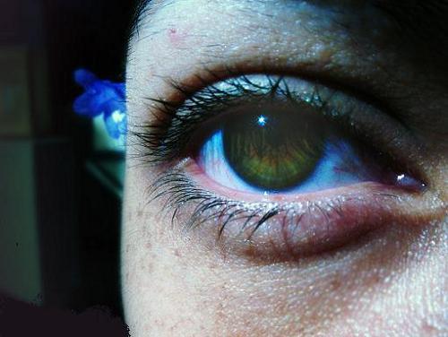 La máscara para los ojos con la yema