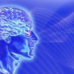 Construyendo un cerebro artificial