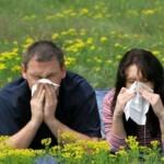 Alergias: causas, tipos y consejos