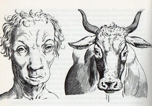 Humanos y Animales, grabado