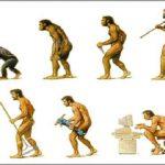 ¿Viola la evolución el segundo principio de la termodinámica?