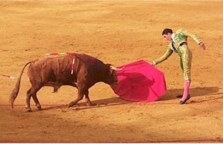 ¿Es cierto que el color rojo enfurece a los toros?