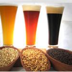 Curiosidades sobre la cerveza