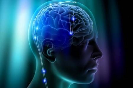 Vivir con medio cerebro