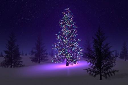 Por qué decoramos un árbol en Navidad