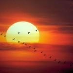 Datos curiosos sobre el Sol