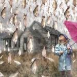 Lluvias extrañas, fenómenos de la Naturaleza