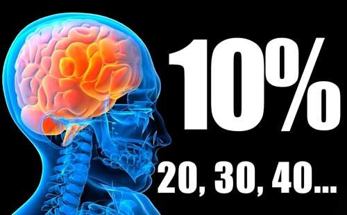 http://sobrecuriosidades.com/wp-content/uploads/2014/05/Cerebro.jpg
