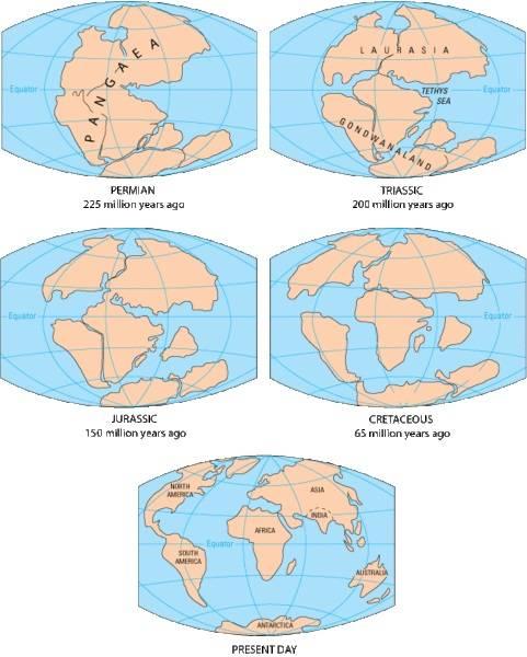 Segregacion de Pangea